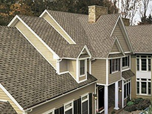 Fritz Sons Roofing