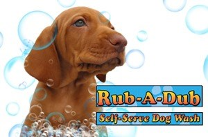 Rub a dub self serve dog wash pet supplies whol mfrs in hamilton video1 solutioingenieria Gallery
