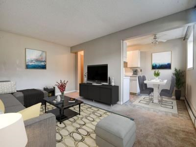 1 Bedroom Apartment For Rent Edmonton Travel Informations And