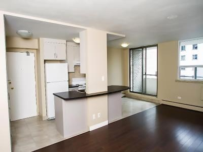 Astonishing Apartment For Rent In 255 Bold Street Home Interior And Landscaping Oversignezvosmurscom