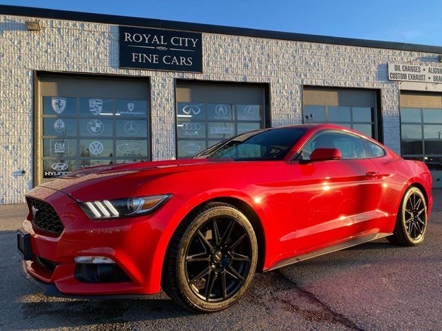 2016 Ford Mustang V6 Fastback Clean Carfax Heated Seat Roush Exhaust Race Red For 17995 In Guelph Niagarathisweek Com