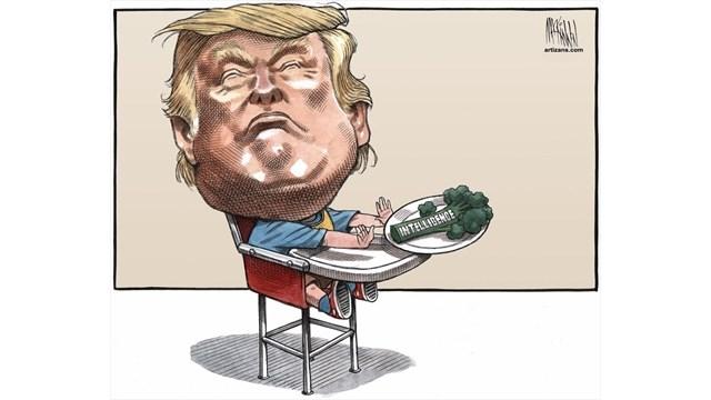 Political Cartoons Political Jokes Humour Thespeccom