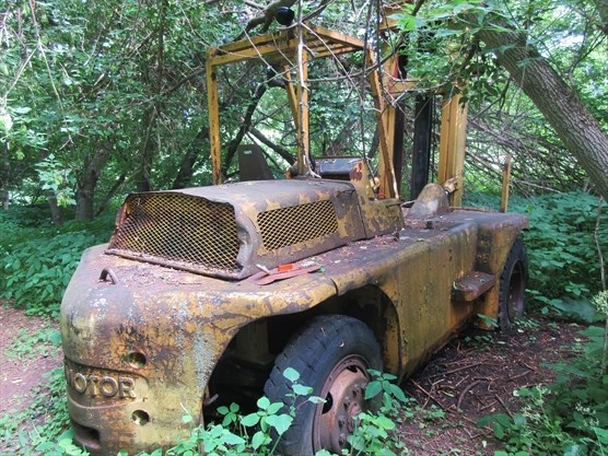 Did You Know Vintage Vehicles Lay Abandoned On The Dufferin
