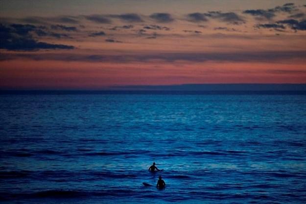 Scientists warn of vanishing oxygen in oceans-Image1