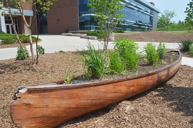 Image result for niagara college indigenous gardens