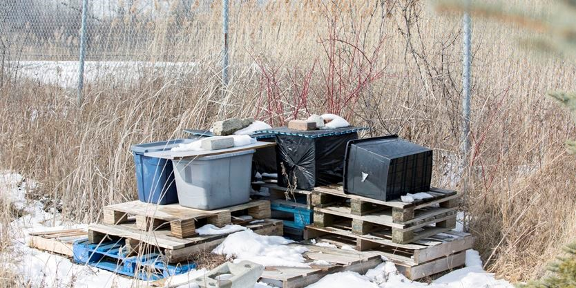 Homemade Cat Shelter For Feral Animals Marcus Oleniuk Toronto Star