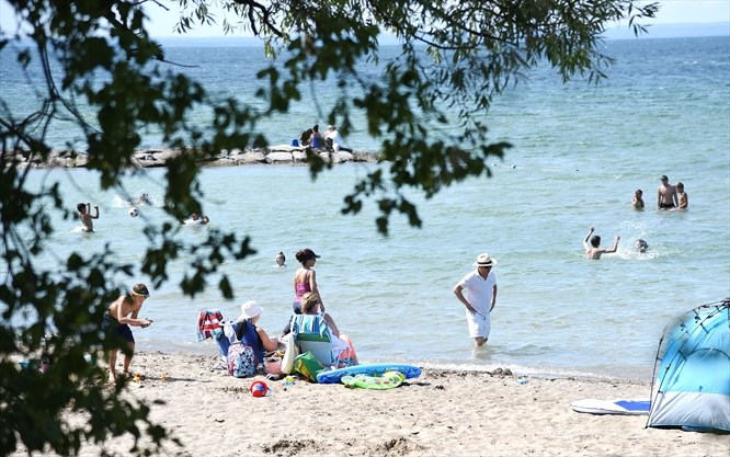 Willow Beach Ontario >> Sandy Beaches In York Region Dip Your Toes In Waters Of