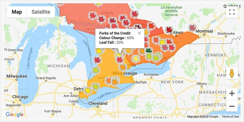 Fall Foliage Map Ontario Canada DID YOU KNOW? You can track fall colour foliage reports with this