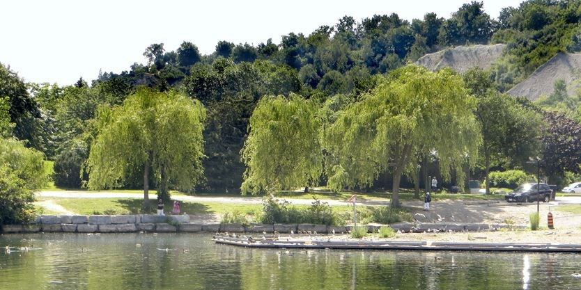 how to get to bluffers park by ttc