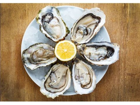 10 Restaurants With Oysters To Devour By The Dozen
