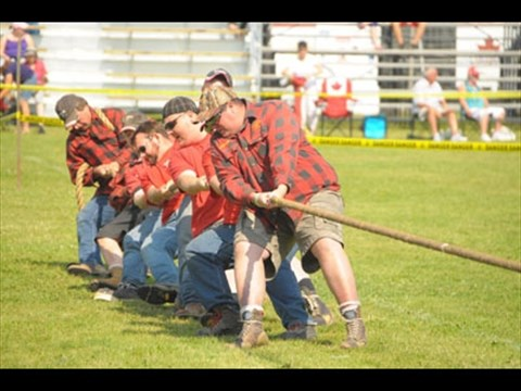 Fergus Scottish Festival & Highland Games