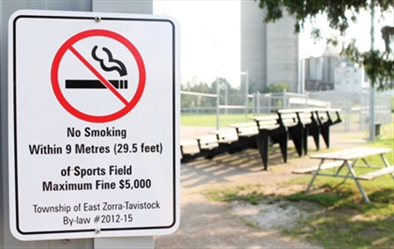Wilmot Mulling Smoke Free Township Sports Fields And Playgrounds