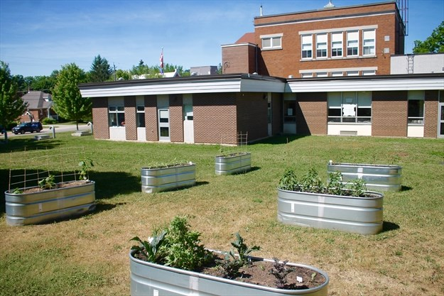 New Dundee Public a gold certified EcoSchool | NewHamburgIndependent.ca