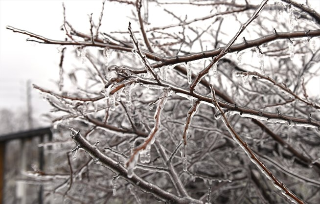 Guelph, Cambridge could see freezing rain Friday night