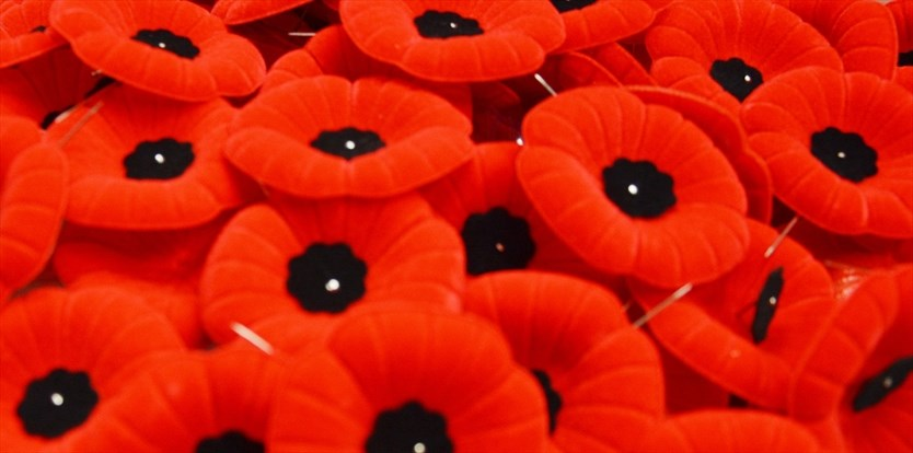 A Remembrance Day poem by Grade 6 Georgetown student