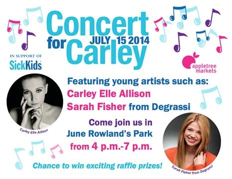 Concert For Carley on July 15,2014   TheSpec com