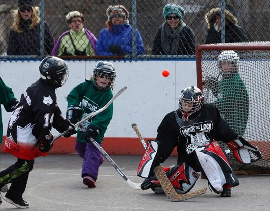 Peterborough Minor Ball Hockey League looks to expand