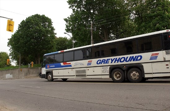 Greyhound reduces Kitchener-Toronto service as riders opt for