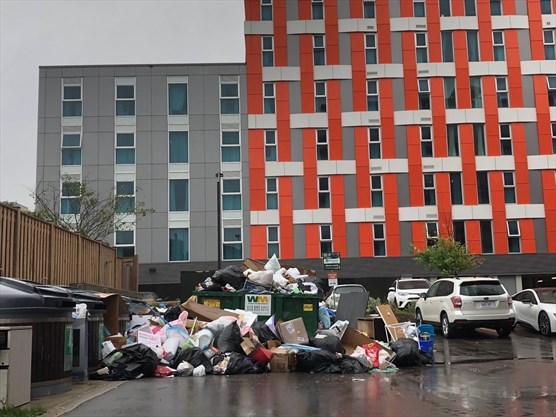 'Respect severely lacking': Garbage concerns piling up in