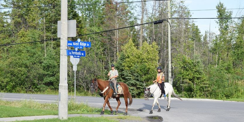 Two sisters stop in Stittsville on cross country horseback ride