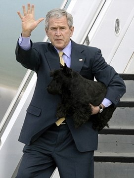 Dubya's dog bites White House reporter | TheSpec com