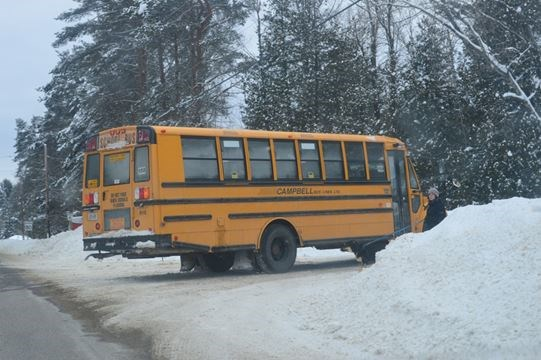 Check for school bus cancellations and delays in Muskoka