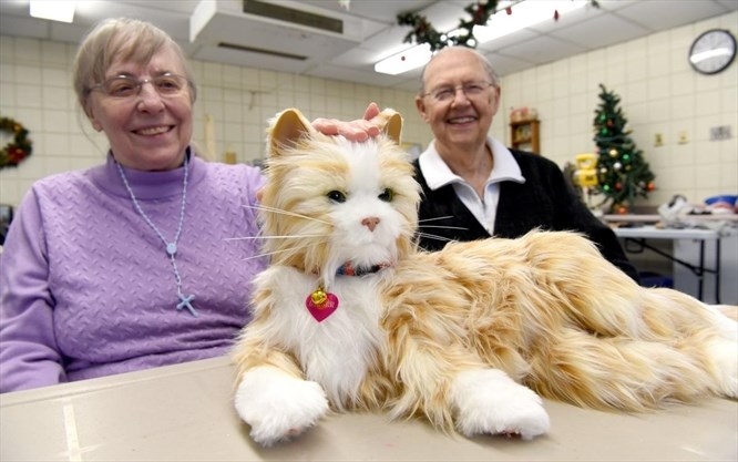 Robotic pets generating love at Welland extended care unit