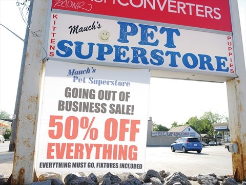 Proposed oshawa puppy sale ban forcing him out of business for D furniture galleries going out of business