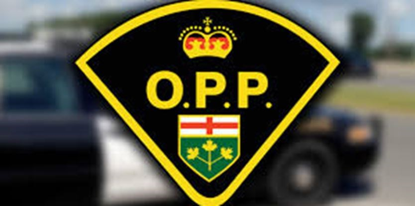Hwy 400 lanes near Port Severn reopened after vehicle in ditch on