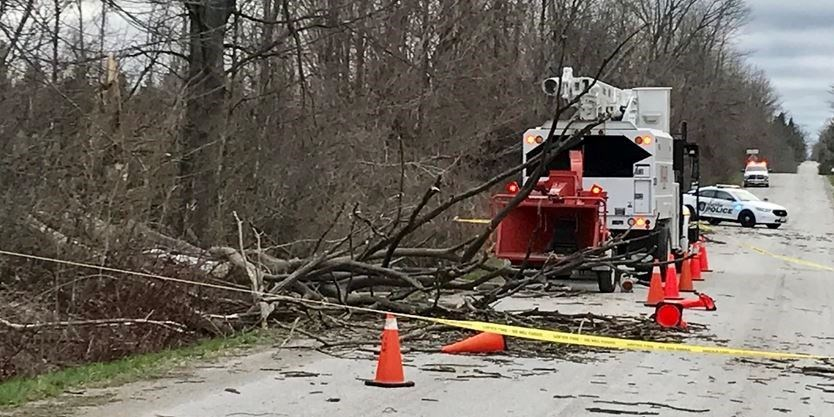 UPDATE: Second tree service employee succumbs to injuries