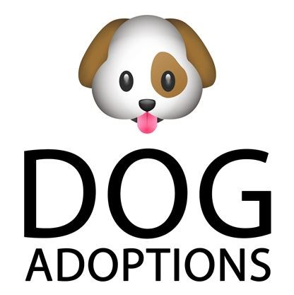 Finding them homes dog rescue meet and greet on april 072018 dog adoptionsg m4hsunfo