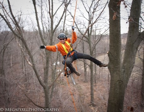 Hamilton arborist climbs to 6th place finish | TheSpec com