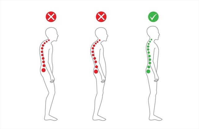 Image result for what does good posture look like spines