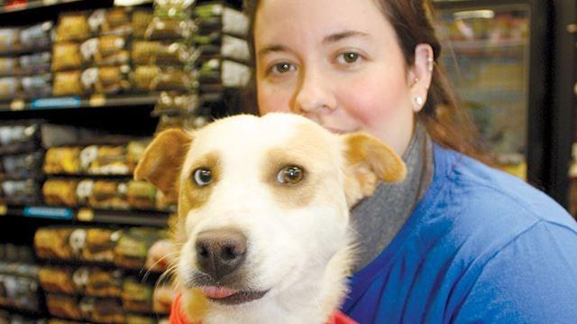 'foster fails' are adoption successes: Simcoe County dog rescue