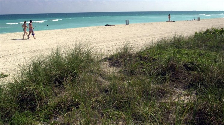 Flesh-eating bacteria in Florida waters: Three things you