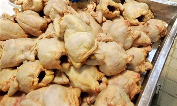 Washing Raw Chicken Spreads Food Poisoning Agent Health Agencies