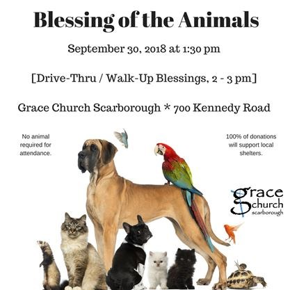 Blessing of the Animals on September 30,2018   Toronto com