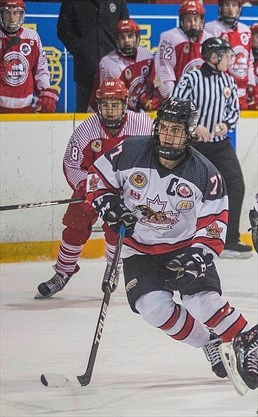 Former Niagara Falls Canucks captain Andrew Barbeau is finishing his junior  hockey career with the Wellington Dukes and going to the RBC Cup Canadian  Junior ... 660270fd1