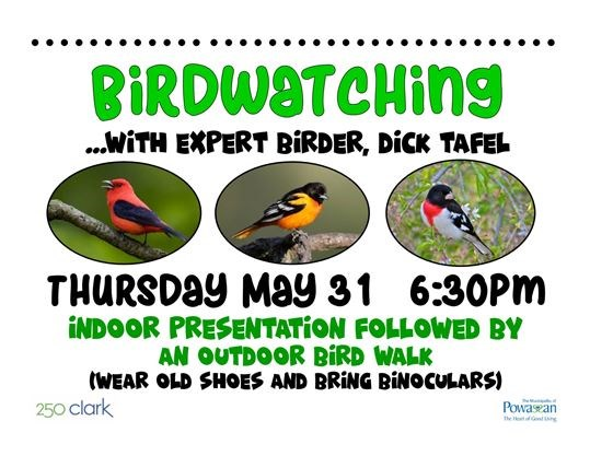 Bird watching dating