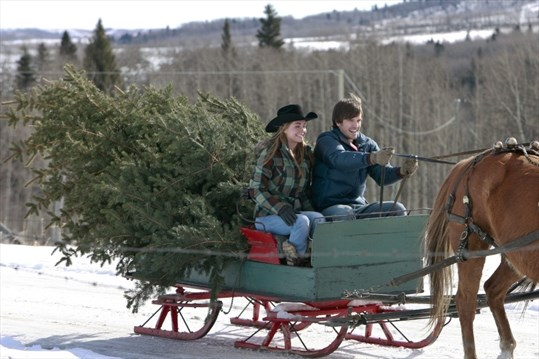 A Heartland Christmas.Heartland Holiday Special Reins Campbell In As Christmas