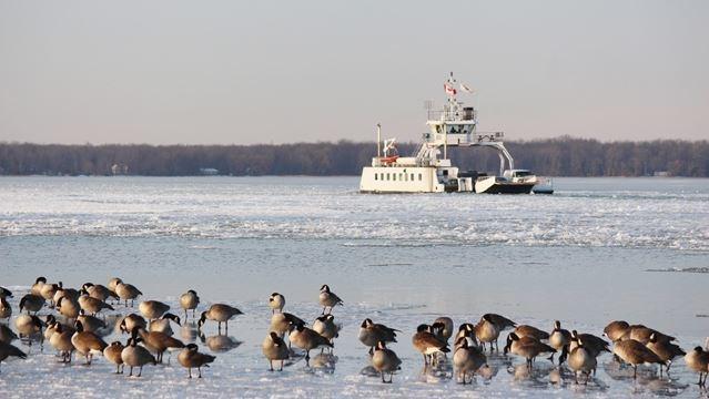 Anglers confident good ice coming soon to lake simcoe for Lake simcoe fishing