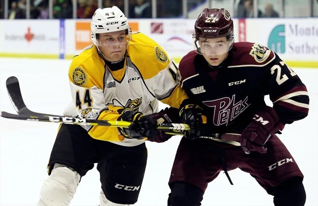 OHL: Peterborough Petes Outscored On Second Night Of Road Swing