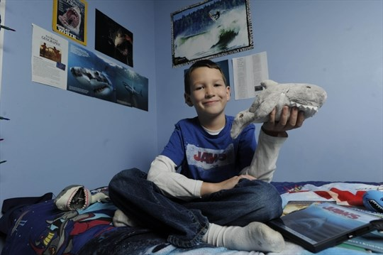 Carleton Henderson In His Bedroom With Some Of Shark Items Including A Plushy Toy The Nine Year Old Kitchener Boy Is Leading Call This