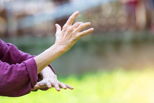 Ernie Schramayr: Tai chi's slow movements help improve