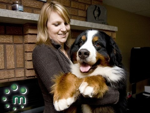 Brighton Pooch One Of The Best In Canada